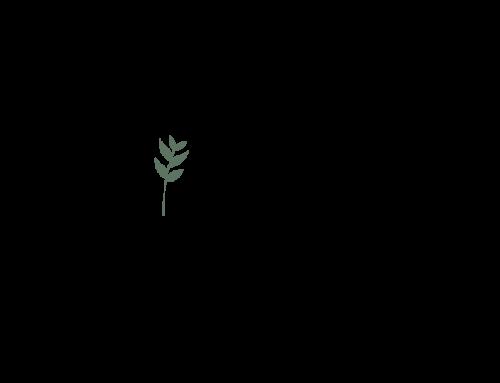 First Impressions Logo Design
